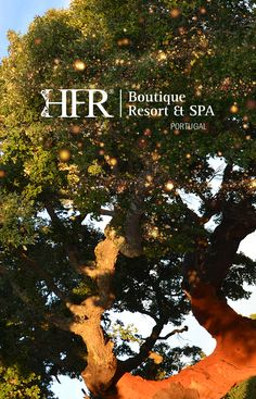 HFR Welcome to the vibrant Sun culture of Portugal. Cork Tree, Portugal Travel, Luxury Travel, Luxury Lifestyle, Places To Visit, How Are You Feeling, Nature, Homestead, Naturaleza