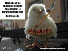 Los ojos del Señor están sobre los justos...Salmos 34:19