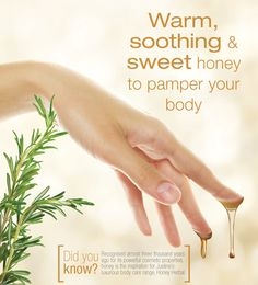Patience, Body Care, Bath And Body, South Africa, Herbalism, Honey, Banner, Layout, Skin Care
