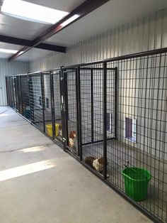 love love love this interior and kennels - Dog Kennel Dog Kennel Inside, Dog Kennel And Run, Building A Dog Kennel, Dog Boarding Kennels, Dog Kennel Designs, Dog Pen, Dog Hotel, Dog Cages, Dog Rooms