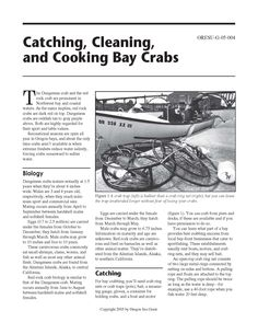 Catching, cleaning, and cooking bay crabs, by the Oregon State University, Sea Grant College Program