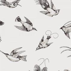 TROPICAL BIRDS sur Au Fil des Couleurs