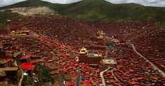 China to displace 5,000 Tibetan Buddhist monastics; Opposing petition gains traction - Lion's Roar