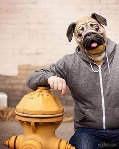 Awesome pug #mask
