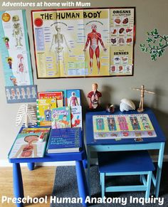 Building a Body - Preschool Anatomy from Adventures at Home with Mum