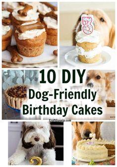 Easy Dog Cake Recipe, Dog Cake Recipes, Dog Biscuit Recipes, Dog Treat Recipes, Dog Food Recipes, Dog Bday Cake, Puppy Birthday Cakes, Diy Birthday Cake, Dog Birthday