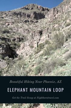 Elephant Mountain Loop Trail is a 7 mile trek on the edge of the Phoenix-metro area. It's both challenging and beautiful. Bear Mountain, Mountain Trails, Canada Travel, Travel Usa, Arizona National Parks, Maricopa County, County Park, Parks N Rec, Outdoor Travel