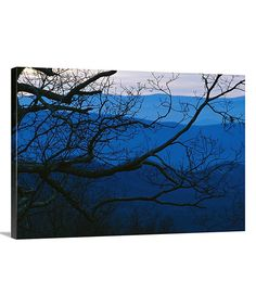 http://www.zulily.com/p/blue-ridge-mountains-sunset-gallery-wrapped-canvas-191431-39339837.html?pos=24