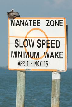 Manatee Zone on Captiva and Sanibel Island