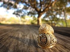 The Aggie Ring.  The door to the Aggie Network.