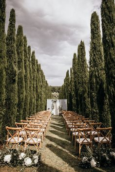 A summer wedding ceremony in a lush cypress grove. Photo: @candidaandmaxjan