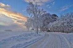 Scandinavian Winter Denmark  Winter in Denmark by Flemming christiansen