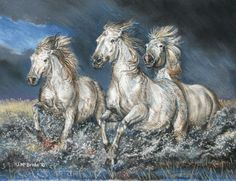 Carmargue horses before the storm - pastels
