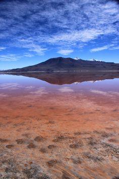 Uyuni red lake, Bolivia