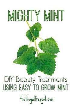 The best DIY projects & DIY ideas and tutorials: sewing, paper craft, DIY. Beauty Tip / DIY Face Masks 2017 / 2018 Mighty Mint: DIY Beauty Treatments Using Easy to Grow Mint -Read Beauty Tips For Skin, Healthy Beauty, Skin Care Tips, Beauty Hacks, Korean Beauty Routine, Beauty Routines, Diy Makeup Remover, French Beauty Secrets, Cucumber Beauty