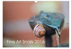veredit-photographic-poems: NEW !!! Snails 2016 Calendar - Fine Art Snails 2016 Calendar !!  My new Fine Art Snail Calendar 2016 is now available !!! Everywhere in Europe !! Celebrate every month of the new year with one of these twelve funny and so beautifully photographed snails. Cute little moments to open your sense for the magical world of small things around us. For the 1st time in the publishing commercially available, to be ordered at the following link -> everywhere in Europ...