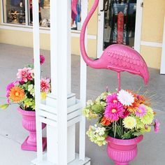 Found this great decoration 😍 loooove it 🌸🌴. #decoration#love#flamingo#flowers#instagood#instalove#lifestyle#lifestyleblog#instastyle#follow#fashion#blog#fashionblog#blogger#beautiful#look#great#style#styles#lifeisbeautiful#florida#styleblogger#enjoy#your#life Flamingo Flower, Enjoy Your Life, Instagram Fashion, Lifestyle Blog, Looks Great, Florida, Photo And Video, Decoration, Flowers