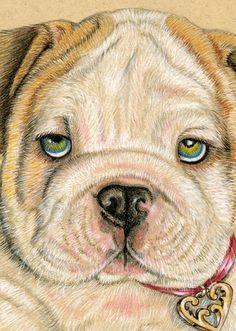 English Bulldog Puppy Art Print by roxy5235 on Etsy, $19.99
