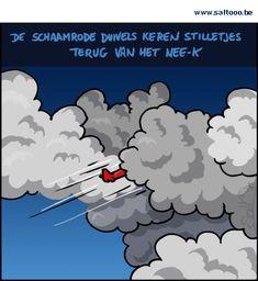 Thema van de cartoon op deze pagina: De Rode Duivels stelden verschrikkelijk teleur op het Ek 2016, klik op de cartoon om naar de volgende te gaan