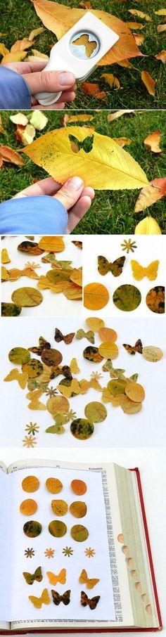 パンチでかわいいかたちに切り抜くのも素敵なアイデアですね。 いろんな色の落ち葉を集めたら、色見本帳が作れそう♪