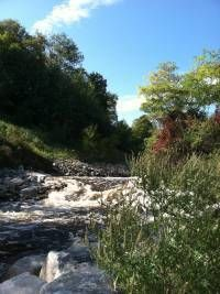 Bear River Recreation Area in Petoskey. Great walking and hiking trails. Kayak or canoe down the river.