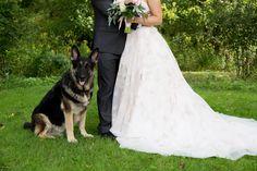 Champy Wedding Day, Wedding Dresses, Pi Day Wedding, Bride Gowns, Wedding Gowns, Weding Dresses, Wedding Dress, Wedding Dressses, Wedding Anniversary