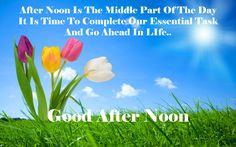 good after noon nature hd desktop wallpaper