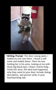 writing Prompt: creative writing Gotta get funny things to intrigue them! Picture Writing Prompts, Writing Photos, Writing Topics, Writing Classes, Narrative Writing, Writing Lessons, Kids Writing, Writing Activities, Writing Prompts For Kids