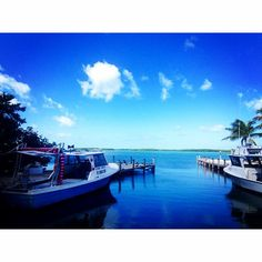 Islamorada fish company. Caught this on our trip down to keywest.  #boat #water #sky #clouds #nature #marina #islamorada #livinglife #blessed #tonyturphotography