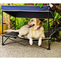 Medium Pet Bed with Shade
