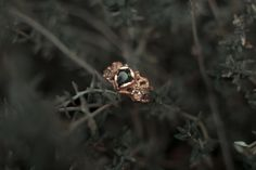 Rose gold black diamond engagement ring rhodes wedding co