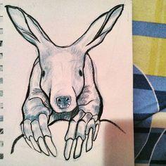 #aardvark #sketchbook