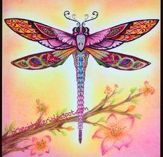 Floresta encantada - enchanted forest - secret garden - Johanna Basford - floresta encantada - jardim secreto - livro de colorir