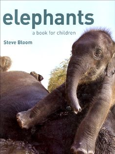 Children will love this beautiful, elephant fun fact book