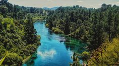 Waikato river, Taupo, New Zealand van Malou Roos op canvas, behang en meer South Pacific, Pacific Ocean, Taupo New Zealand, State Of Arizona, Van, Island, World, Water, Prints