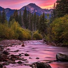 """""""purple mountain majesties"""" actually means. 