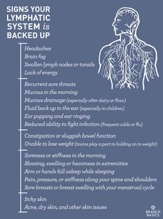 Branch Basics | Signs Your Lymphatic System is Backed Up and how to flush it
