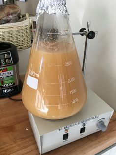 Yeast starter after 18 hours