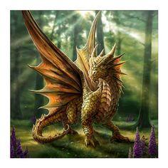 Art by Anne Stokes (Ironshod) Dragon Fantasy Myth Mythical Mystical Legend Dragons Wings Sword Sorcery Art Magic Drache dragon drago dragon Дракон drak dragão Anne Stokes, Fantasy Kunst, Fantasy Art, Fantasy Forest, Dragon Medieval, Dragon Birthday, Dragon's Lair, Dragon Artwork, Dragon Pictures