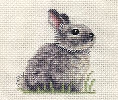 GREY BUNNY RABBIT baby, counted cross stitch kit + all materials needed in Collectables, Animals, Farm/Countryside | eBay