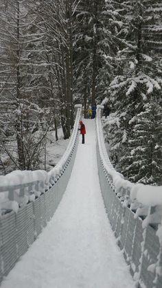 ~Walking in The Winter Wonderland!~