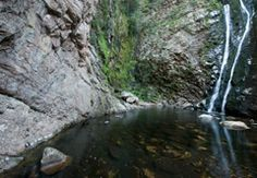 Page 5 of 9 / Find Things To Do in Karoo. Popular activities for tourists like Self Drive Oudtshoorn to Meiringspoort, Explore the Cango Caves, Cango . Stuff To Do, Things To Do, Waterfall, Activities, Explore, Search, Outdoor, Things To Make, Research