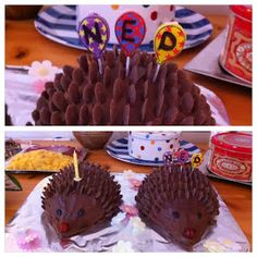 Cadbury's Hedgehog Cake