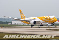 Boeing 787-8 Dreamliner - Scoot | Aviation Photo #4025243 | Airliners.net
