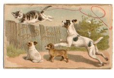 Early Raphael Tuck Greetings card - with cats and dogs. Helena Maguire.