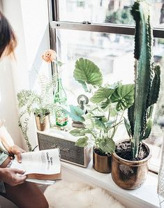 urban outfitters marshall mini amp with potted plants in nyc apartment / sfgirlbybay
