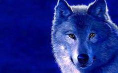 Картинки по запросу волк тотем