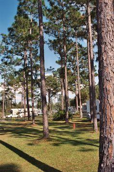 Whispering Pines RV Park at Silver Springs, Florida