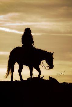"""In riding a horse, we borrow freedom."" - Helen Thompson"
