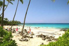 Disappearing Sands Beach on Kailua Kona Hawaii! Sea Turtles just continually swam up to us...amazing!